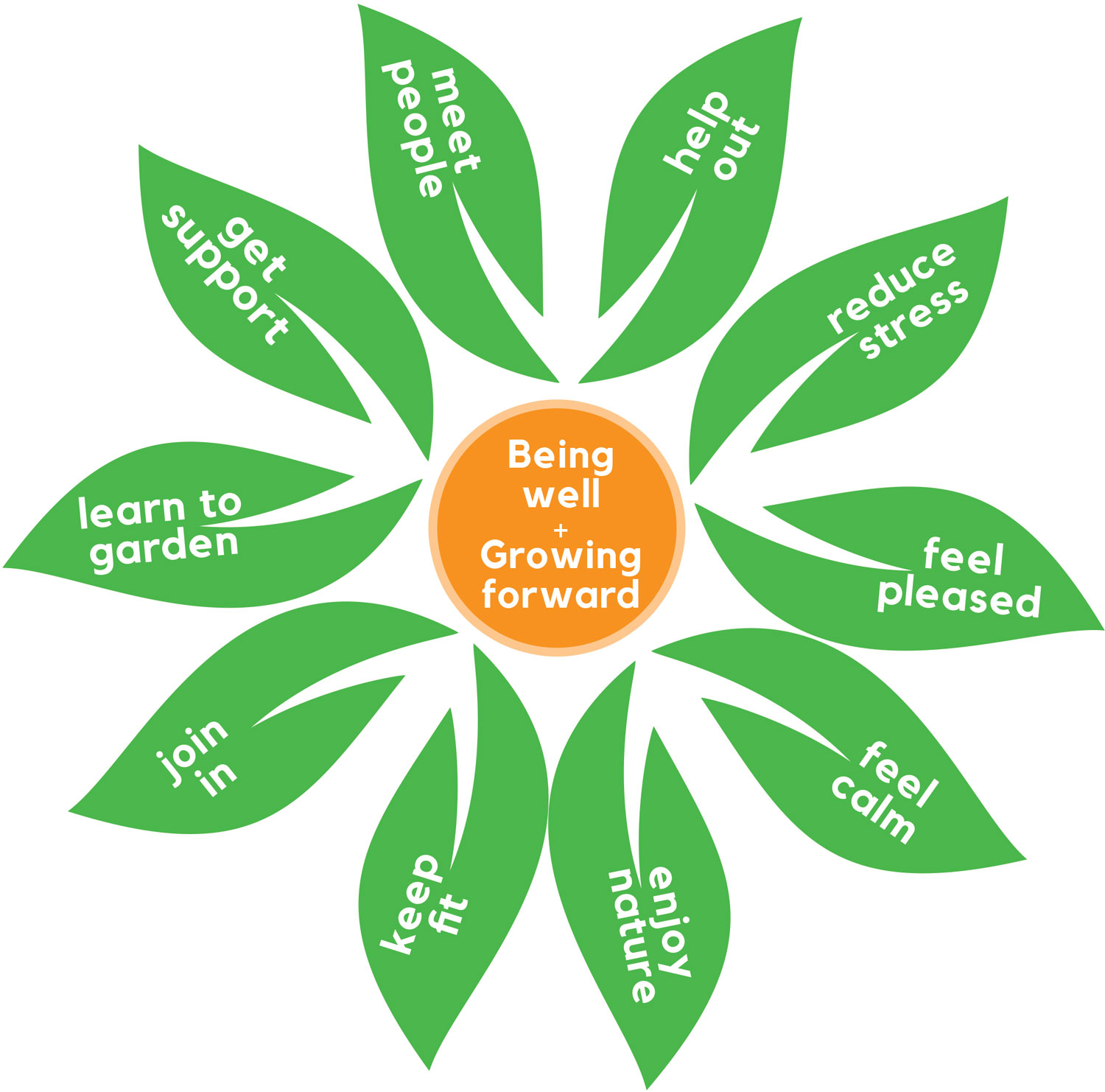 A flower graphic with the text 'Being Well + Growing Forward' in the centre and benefits of STH in the petals